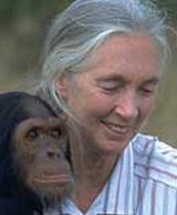 Jane_Goodall_1