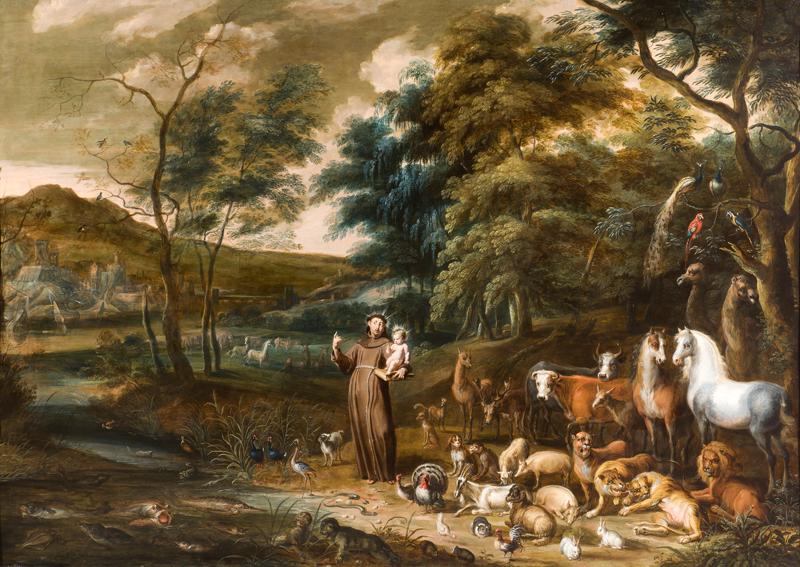 Resultado de imagen para animales san francisco