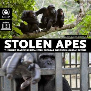 stolen_apes