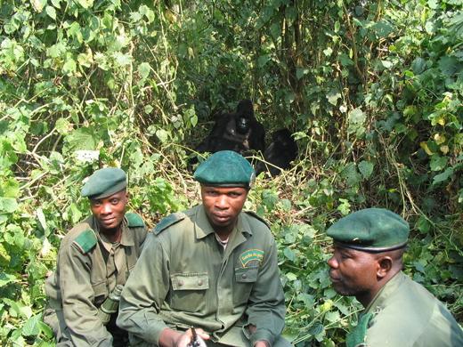 Rangers congolenos en Virunga