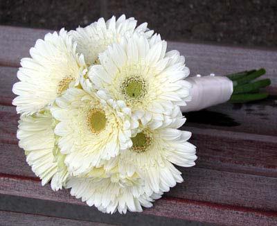 flores_blancas_quamquat