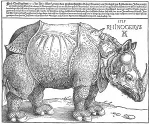 Alberto Durero - Rinoceronte (1515)-Wikimmedia