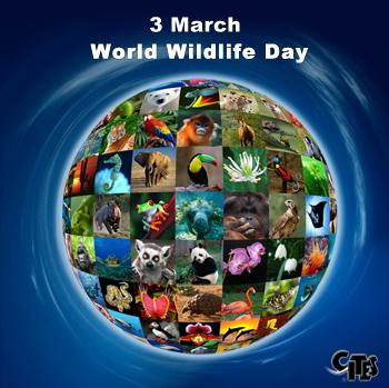 Dia Mundial de la Naturaleza - CITES